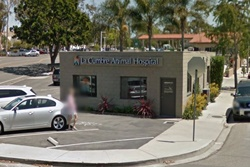 vet in santa barbara, veterinarians santa barbara